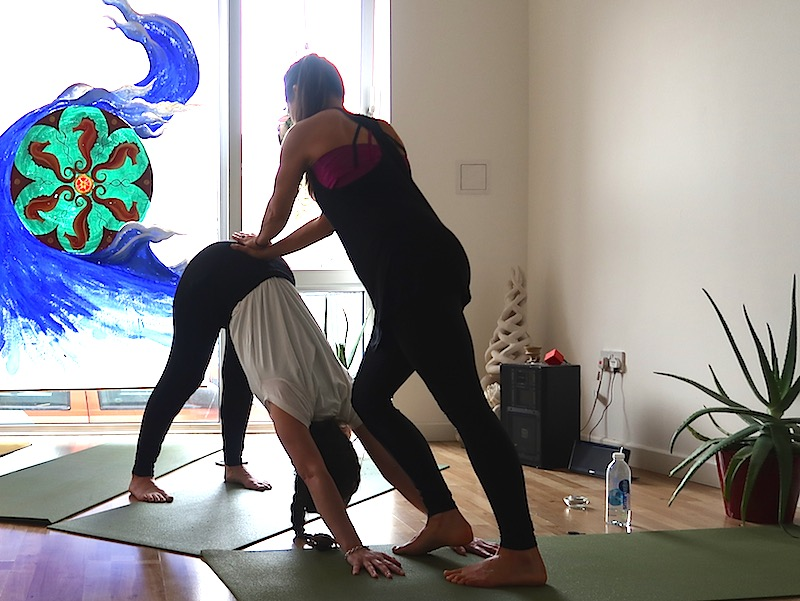 real flow yoga teacher training art of adjustment